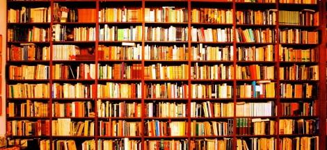 biblioteca sergio marentes