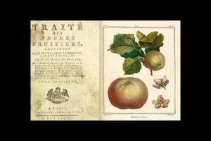 9_tratado-arboles-frutales